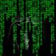 Hintergründe der Hackerszene - Die Onlinerin