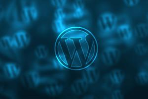 Warum WordPress - Die Onlinerin